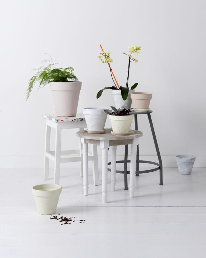 Krukjes pimpelwit styling interieurontwerp en styling advies - Idee van interieurontwerp ...