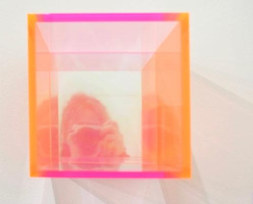 Pimpelwit interieurontwerp-desig-objectrotterdam-ssrotterdam-wooninspiratie-kunst-selfie-jpg