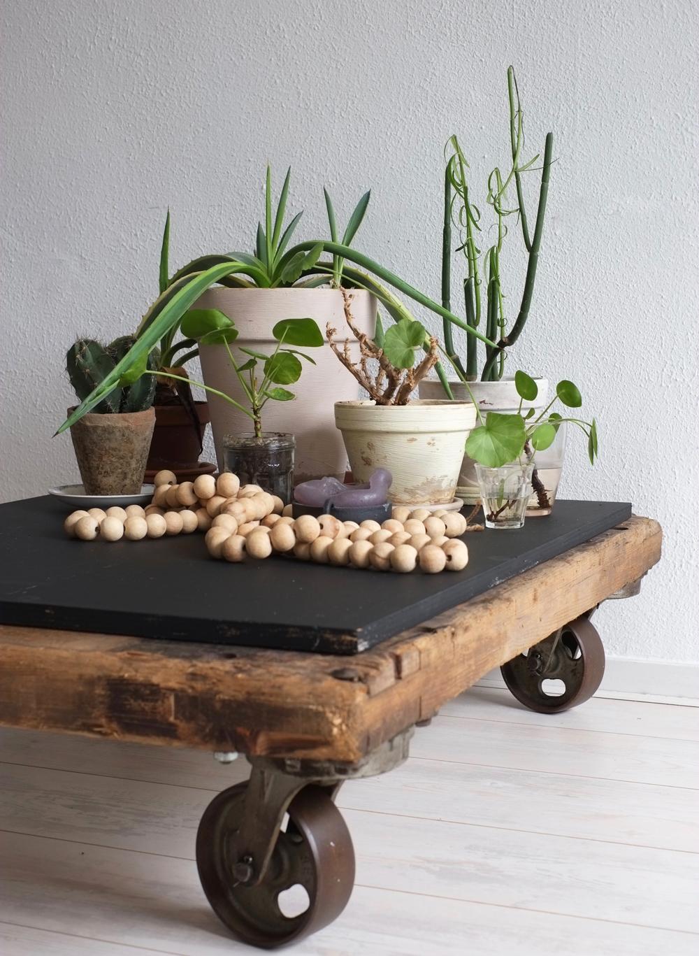 Pimpelwit Interieurontwerp-industriele tafel-planten