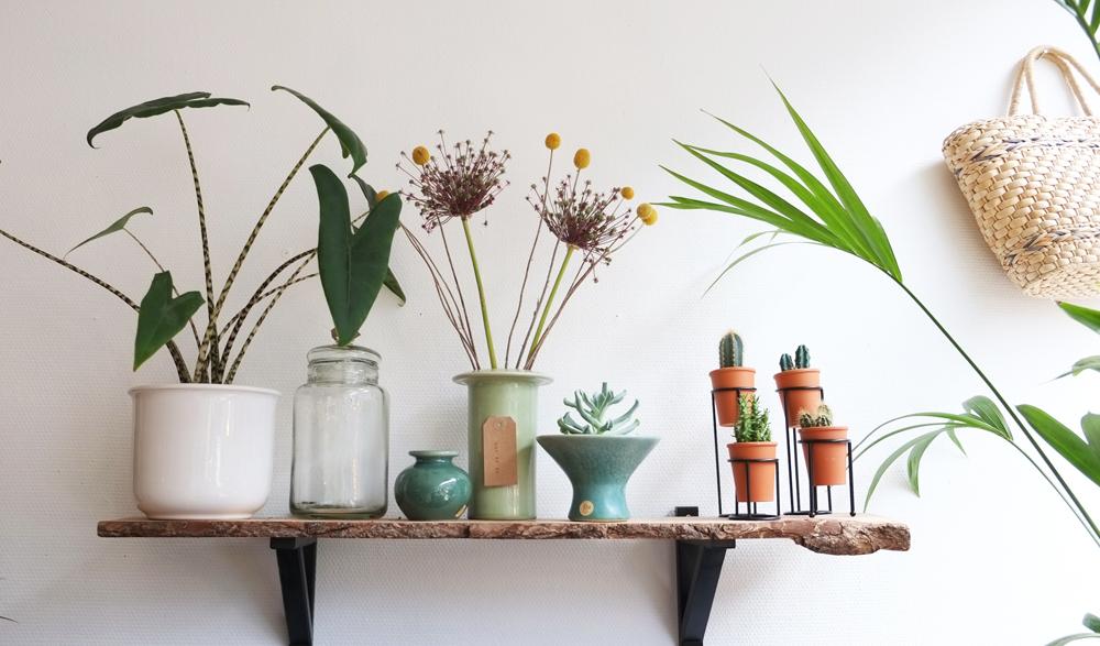 Festival designkwartier- 2017-interieur-wonen-woonkamer-keuken-meubels-pimpelwit-styling-planten