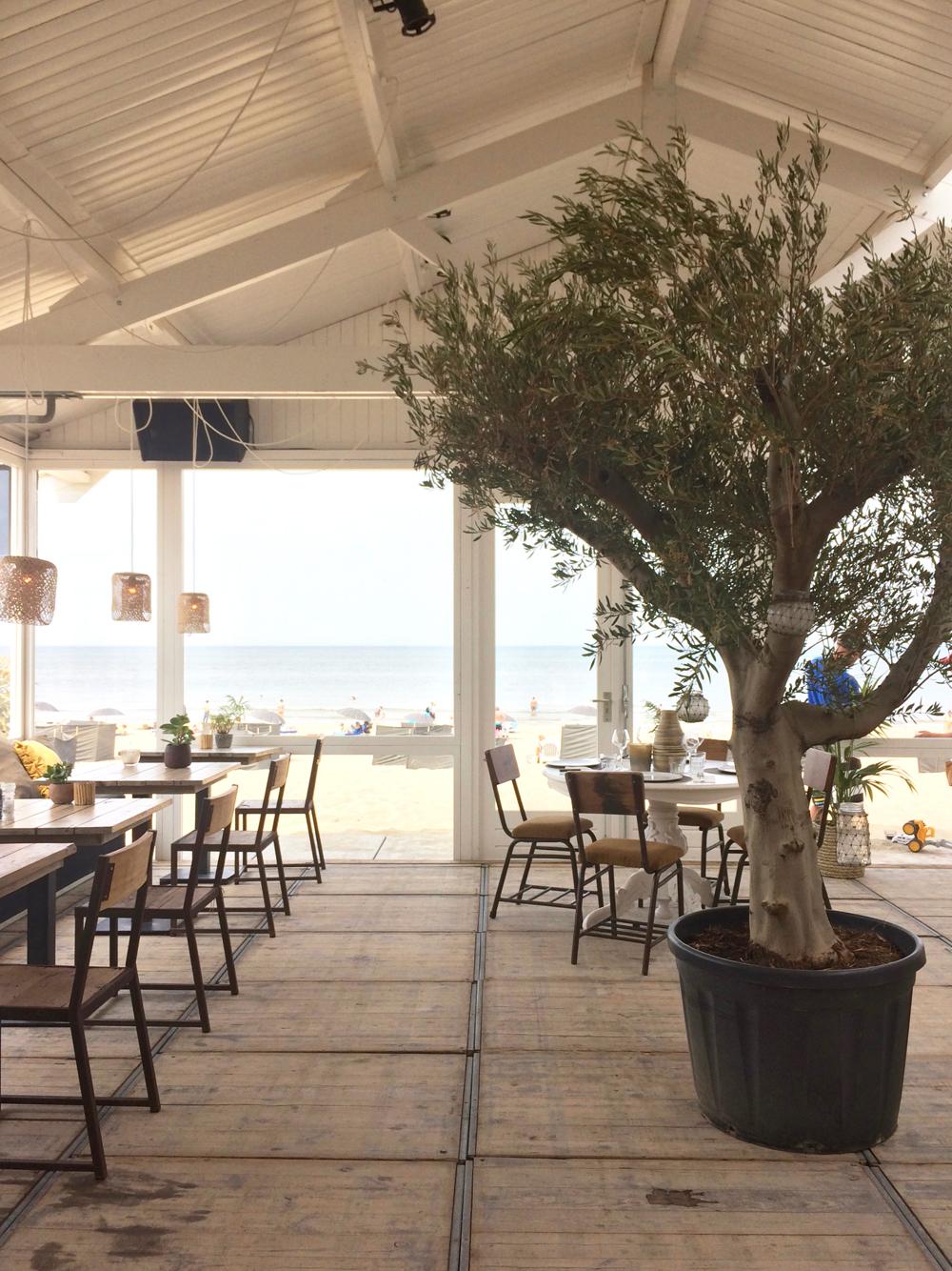 strandpaviljoen-styling-zandvoort-hippiefish-pimpelwit-olijfboom-showhome